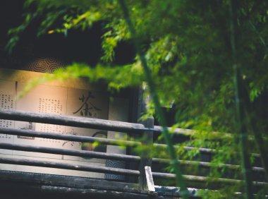 中国关于竹子的历史故事
